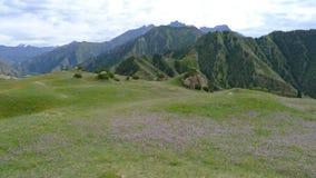 Landscape in Tianshan mountain. Xinjiang, China Royalty Free Stock Photo