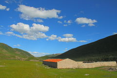 Landscape on Tibetan Plateau Stock Image