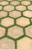 Landscape tiles Stock Photo