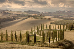 Landscape tipical Tuscany nature, vintage Royalty Free Stock Image