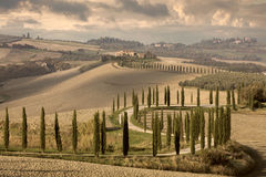 Landscape tipical Tuscany nature, vintage Royalty Free Stock Photography