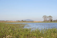 Landscape of Tokaj Royalty Free Stock Photography