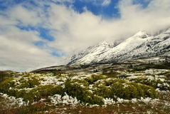 Landscape of Torres del Paine Royalty Free Stock Photos