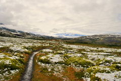 Landscape of Torres del Paine Stock Photography