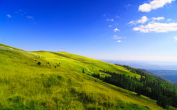 Landscape from Transalpina road (Romania) Royalty Free Stock Photo