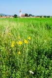 Landscape in Transylvania, Rotbav Royalty Free Stock Photos