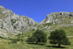 Landscape in Trascau Mountains Stock Image