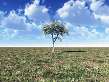 Landscape with tree Stock Images