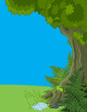 Landscape with Tree and Fern. Illustration of Landscape with Tree and Fern Stock Photography