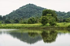 Landscape of tree and reflection on water. Natural lanscape of green trees in meadow near moutain with skyline reflection on the pond in Nakhon Nayok Province royalty free stock photos