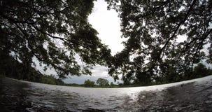 Landscape stock video