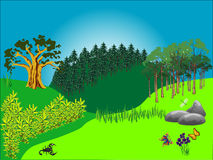 Landscape with trees. Abstract colored background with trees, stones, plants and insects Royalty Free Stock Photo