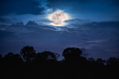 Landscape of trees against night sky with full moon behind cloud. S over tranquil at forest. Dark tone. Beautiful nature background, outdoors at nighttime. The royalty free stock photo