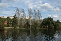 Landscape with the trees on the bank of Mondego river royalty free stock images
