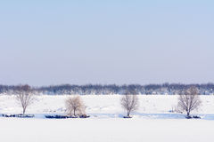 Landscape of trees covered with snow. Beautiful winter view with Royalty Free Stock Images