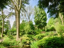 Landscape of the trees. Dewstow Gardens Caerwent Caldicot Wales united kingdom stock images