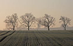 Landscape of trees on a frosty early winter morning. Royalty Free Stock Photos