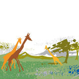 Giraffe, countryside Royalty Free Stock Photography
