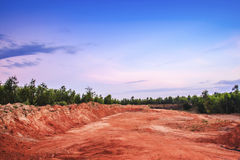 Landscape with trees ground deserted Royalty Free Stock Images