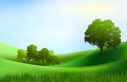 Landscape trees hills background Royalty Free Stock Photos