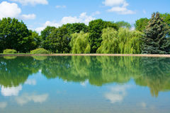 Landscape trees lake. Beautiful landscape.the trees around the pond in the summer.mirror reflection of trees in pond Stock Photos