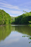 Landscape trees on the lake Stock Photo