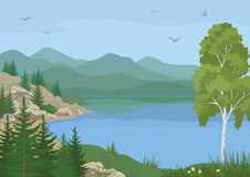 Landscape with Trees and Mountain Lake Royalty Free Stock Photo