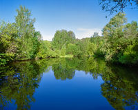 Landscape with trees, reflecting in the water Royalty Free Stock Photos