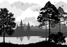Landscape, Trees, River and Birds Silhouette Royalty Free Stock Photography