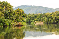 Landscape with trees and a river in front Stock Images