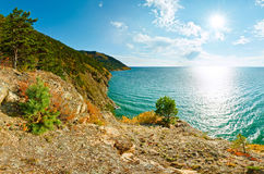 Landscape with trees on rock turquoise sea Baikal.  stock photography