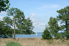 Landscape with trees and yacht on lake Stock Image