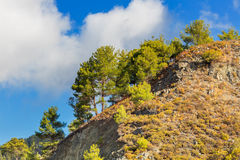 Landscape in Troodos mountains Stock Photo