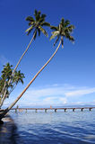 Landscape of a tropical beach in Vanua Levu Island Fiji Royalty Free Stock Photography