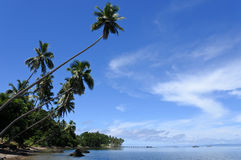 Landscape of a tropical beach in Vanua Levu Island Fiji Royalty Free Stock Images