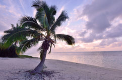 Landscape of tropical Island of Aitutaki Lagoon Royalty Free Stock Image