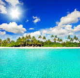 Landscape of tropical island beach with blue sky. Landscape of tropical island beach with perfect sunny blue sky Royalty Free Stock Images