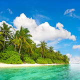 Landscape of tropical island beach. With palm trees and cloudy blue sky Royalty Free Stock Image