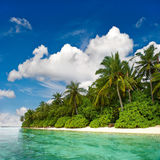 Landscape of tropical island beach. With palm trees and cloudy blue sky Royalty Free Stock Photo