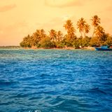 Landscape of tropical island beach with palm trees Stock Photos