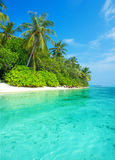 Landscape of tropical island beach with palms. Landscape of tropical island beach with palm trees and cloudy blue sky Stock Photo