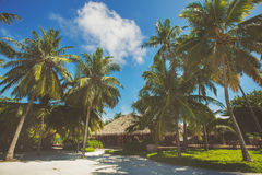 Landscape of tropical island beach with perfect sky, palms, traditional buildings Royalty Free Stock Photo