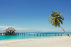 Landscape of tropical island beach with perfect sky, palms, traditional buildings Royalty Free Stock Images