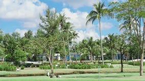 Landscape of tropical resort stock video