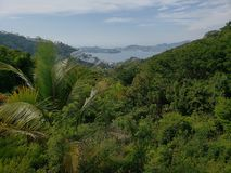 Landscape with tropical vegetation and view of the bay of Acapulco from a mountain. Travel and tourism in Mexico, backdrop for environmental and nature ads stock photography