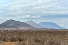 Landscape in Tsavo National Park, Kenya Stock Images