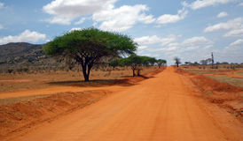Landscape in Tsavo park Royalty Free Stock Images