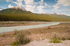 Landscape of tundra wetland Royalty Free Stock Photos