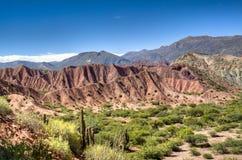 Landscape at Tupiza. Landscape in the area of Tupiza, Bolivia Royalty Free Stock Image