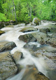 Landscape with turbulent mountain river Stock Photography